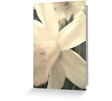 A Lighter Shade of Pale Greeting Card