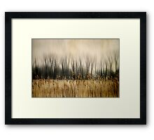 Marsh Edge Framed Print