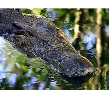 Croc Wanna Eat Me Photographic Print