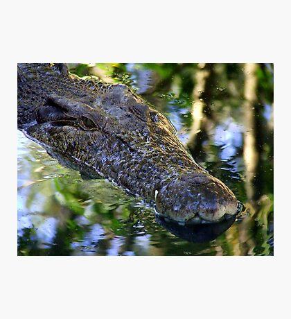 Croc Wanna Eat Me Photographic Print
