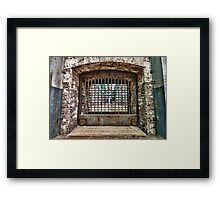 Release the Lions Framed Print
