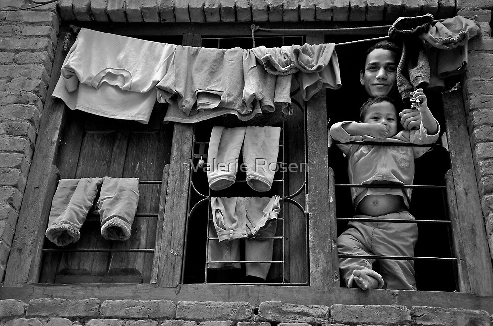 Brothers in the Window by Valerie Rosen