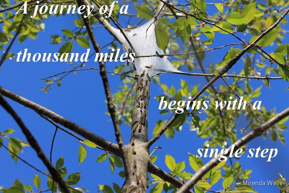 The Journey by Mirenda Wells