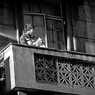 Lady by the window by David  Preston