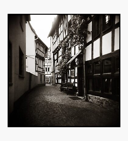 { Uli's Winkle } Photographic Print