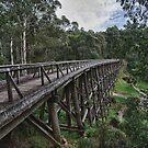 Trestle Bridge by Shari Mattox-Sherriff