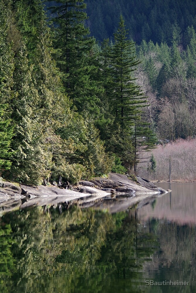 Hicks Lake, BC by Sheri Bawtinheimer