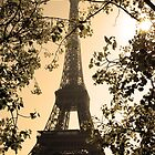 Eiffel Tower by Simon Kirwin