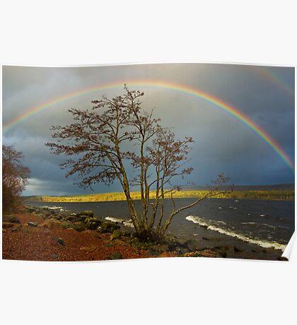 Rainbow Over Ness Poster