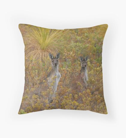 Bush Kangaroos Throw Pillow