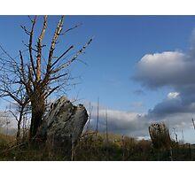Coolmountain Stone Circle Photographic Print