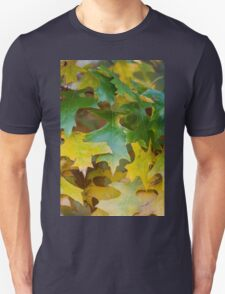 leaves on tree in autumn T-Shirt