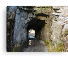Tunnel in County Kerry Canvas Print