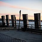 Battery Park at sunset by Vanessa Caine