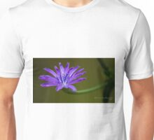 Blue Corn Flower Unisex T-Shirt
