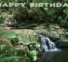 "Protestors Falls NSW Australia "" Happy Birthday"" Card by Sandy1949"