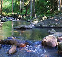 a creek in the valley ... by gail woodbury