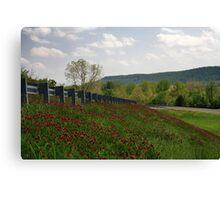 Spring Hill Canvas Print