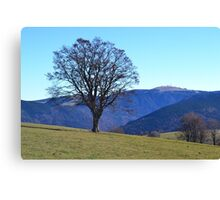 Countryside Canvas Print