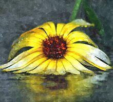Yellow Gerbera Daisy Floiwer In Rain by PhotographyTK