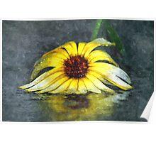 Yellow Gerbera Daisy Floiwer In Rain Poster