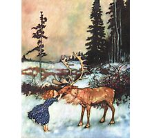 Reindeer Kiss christmas design Photographic Print
