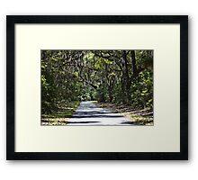 Southland oaks Framed Print