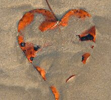 Love on the Beach Palolem by SerenaB