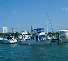 Boats Docked on Nettles Island, Florida by Henry Plumley