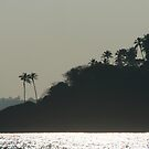 Palm Trees on Monkey Island by SerenaB