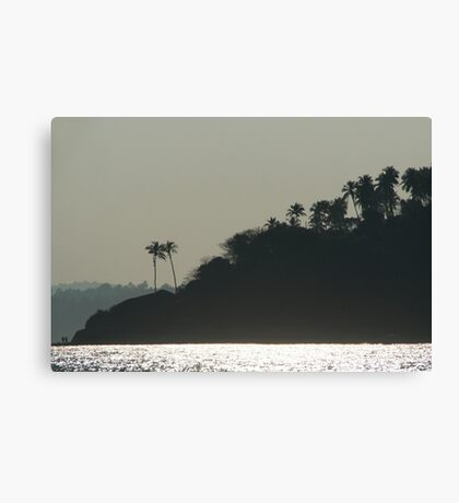 Palm Trees on Monkey Island Canvas Print