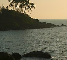 Palm Trees on the Point Palolem by SerenaB