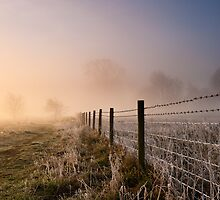 Frosty Fence by mattcattell