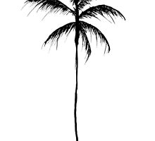 Palm Tree Illustration by katedylan