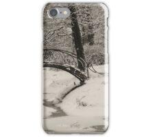 In the winter garden iPhone Case/Skin