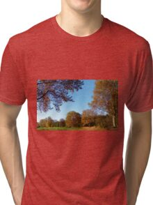 Pieces of Autumn #1 Tri-blend T-Shirt