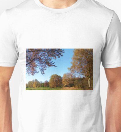 Pieces of Autumn #1 Unisex T-Shirt