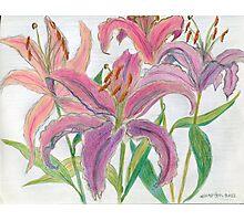 Oriental Lilies Photographic Print