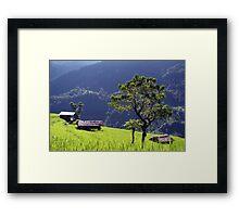 Bright Green Rice Field Nepal Framed Print