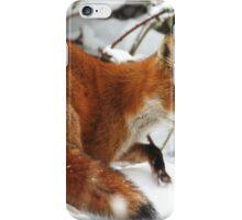 The Snow Fox iPhone Case/Skin