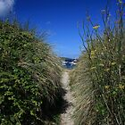 Stunning Scilly by Justine Humphries