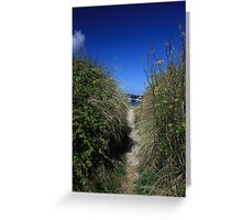 Stunning Scilly Greeting Card