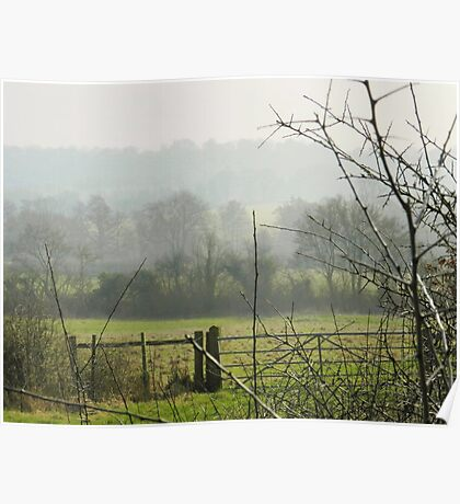 country mist Poster