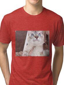 kitten cat Tri-blend T-Shirt