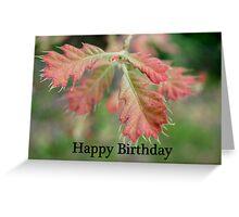 Happy Birthday Card 4 Greeting Card