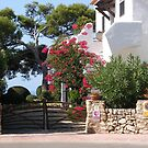 House And Garden In Cala Galdana  by Fara