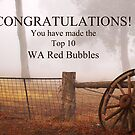 WA Red Bubble Banner Entry by Eve Parry