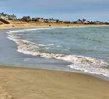 Salty Brine Beach  by John  Kapusta