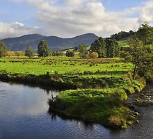 Wilmot River Tasmania by Terry Everson