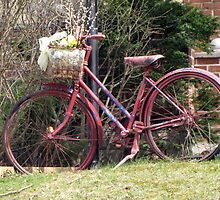 Spring Ride by nikspix